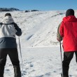 Stock Photo: Rear view of couple with ski poles on snow