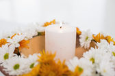 Flowers and a lit candle — Stock Photo