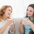 Female friends with coffee enjoying a conversation at home — Stock Photo #37828945