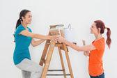 Vrouwelijke vrienden met verf penselen en ladder — Stockfoto
