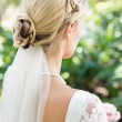 Stock Photo: Blonde bride in a veil