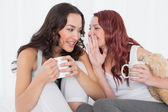 Female friends with coffee cups gossiping in bed — Stock Photo