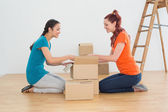 Side view of two friends moving together in a new house — Stock Photo