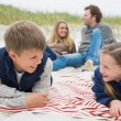 Happy family of four at a beach picnic — Stock Photo #38982777