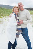 Portrait of a happy senior couple at beach — Stock Photo