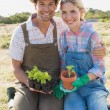 Smiling couple with potted plants in field — Stock Photo