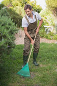 Man in dungarees raking the garden — Stock Photo