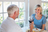 Portrait of a mature couple toasting wine glasses over food — Stock Photo