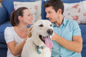 Relaxed couple with pet dog sitting in living room — Stock Photo