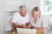 Mature couple using laptop at home — Stock Photo