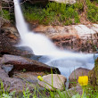 Stock Photo: Flowers in the waterfall - Vertical