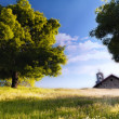 Chapel next to the tree in a grass hill bathed by the light of a beautiful sunset - Color — Stock Photo