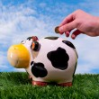 Hand throwing a coin into a piggy bank of a cow  — Stock Photo