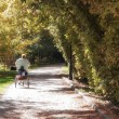 Old woman riding a bicycle in the park - Horizontal — Stock Photo