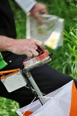 Orienteering control point close-up — Stock Photo