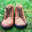 brown boots — Stock Photo #38831247
