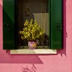 Decoration in Burano and Murano, Venice, Italy — Stock Photo #31090087