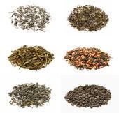 Аssorted tea — Stock Photo