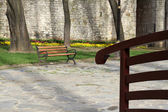 Bench in the spring — Stock Photo