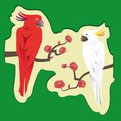 Dos exóticos loros sentado en una rama con rosa tsvetamipopugay — Vector de stock