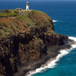 Stock Photo: Lighthouse and Wildlife Refuge Hawaii