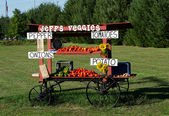 Farm fruit and vegetable stand — Stock Photo