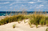 Beautiful  landscape on  lake michigan — Stock Photo