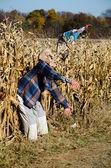 Alien monster in corn maze — Stock Photo