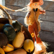 Scarecrow and gourds — Stock Photo #31725047
