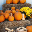 Fall gourds, flowers and pumpkins on hay bales — Stock Photo