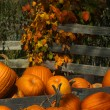 Fall leaves and pumpkins — Stock Photo