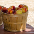 Baskets of fresh peaches — Stock Photo
