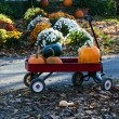 Red wagon full of pumpkins — Stock Photo