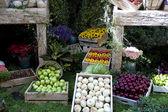 Harvest display — Stock Photo