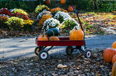Red wagon full of pumpkins — Stock fotografie