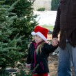 Little girl and dad picking out a tree — Stock Photo