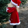 Cute girl in holiday red looks at a Christmas tree — Stock fotografie