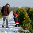 Man and Little girl at Christmas tree farm — Foto Stock