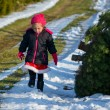 Little girl at Christmas tree farm — ストック写真