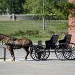 Horse and buggy in modern time — Stock Photo #38229449