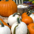 Pile of pumpkins in orange and white with fall mums — Stock Photo #38229561
