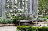 Bench and pear blossoms — Stock Photo