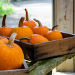 Rustic fall pumpkins in boxes — Photo