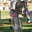Old grave stones from ww2 — Stock Photo #38237687