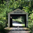 Rush creek Covered bridge in southern indiana — Stock Photo #38237701