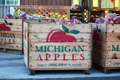 Michigan  apples in crates — Stock Photo