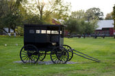 Amish buggy on a farm — Stok fotoğraf