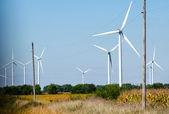 Parc éolien de rural — Photo