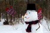 Snögubbe firar vintern — Stockfoto