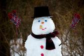 Happy snowman loves winter vortex — Stockfoto